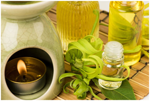 Ylang ylang oil helps in promoting the sleep and relaxing the mind