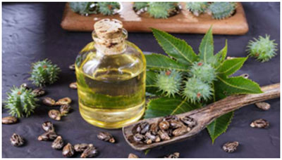 Castor oil has anti-inflammatory properties that helps in improving the taste and smell