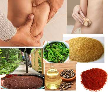 Home Remedies To Get Rid of Cellulite Naturally