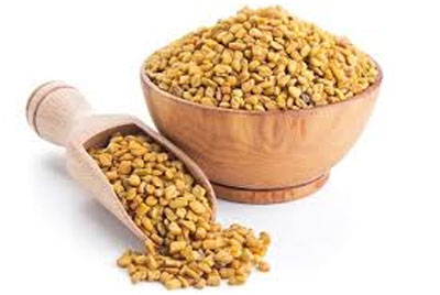 Fenugreek seeds To Manage Gastroparesis