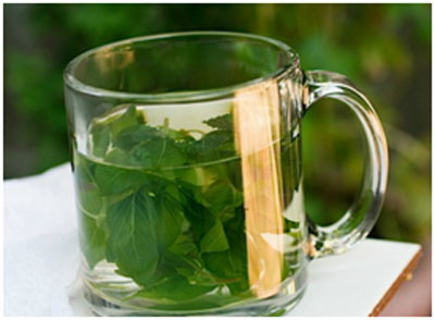 Fennel seeds have cooling effect on the water and prevents from sunstroke as well