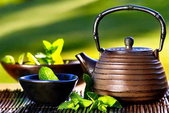 Green Tea: Packed with bioactive compounds that improve health