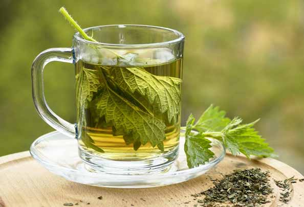 Green Tea which will Lower the Risk of Various Types of Cancer