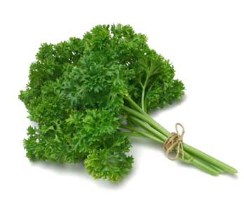 Parsley is a very effective herb to prevent conception in a natural way