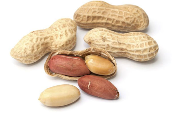 Breast Feeding Mother Should Avoid Peanuts