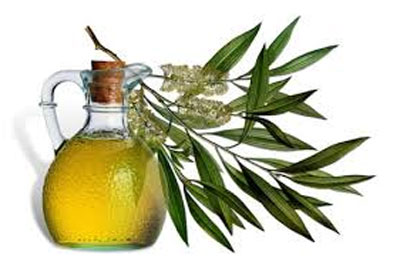 Tea tree oil For Teenage Pimples