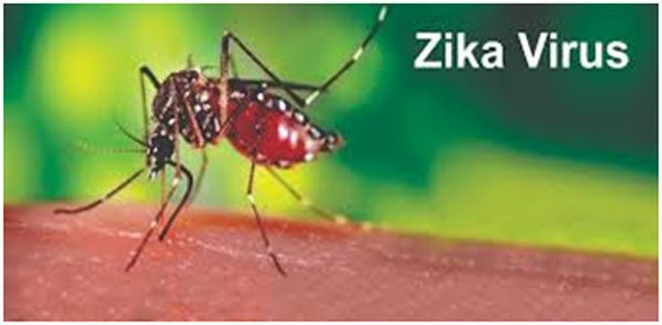 What is Zika Virus Fever