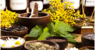 You Will Be Amazed To Know About These Herbs That Prevents Hair Fall!