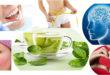 Green Tea Healthiest Super Drink