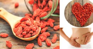 12 Health Benefits That You Can Gain With Goji Berry!